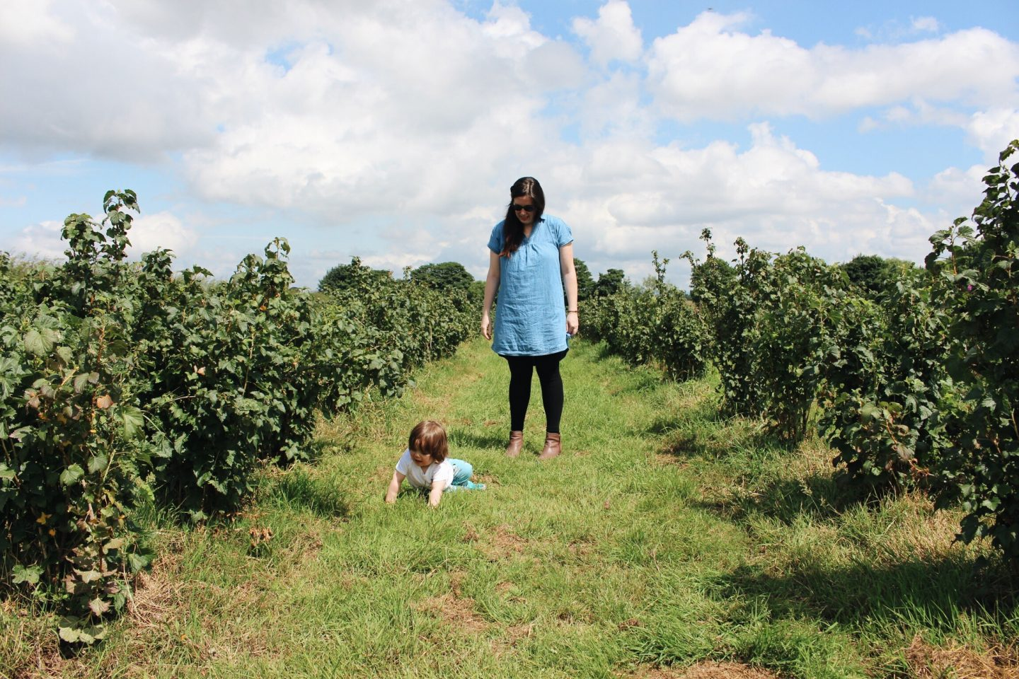 Day Tripping || Fruit Picking