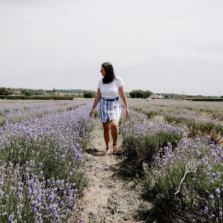 Day Tripping || Lavender Summer Daze